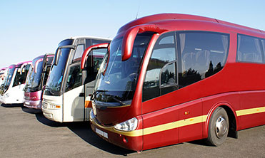 Lineup of parked tour buses